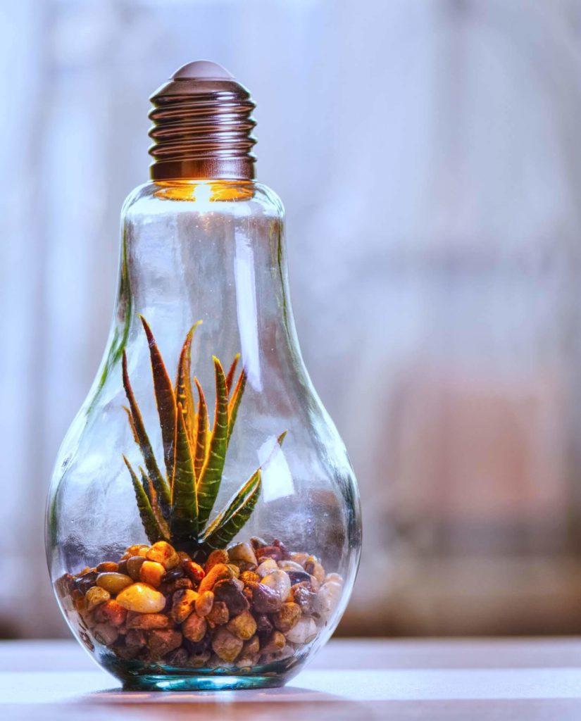 A napelem előnyei: környezetbarát.